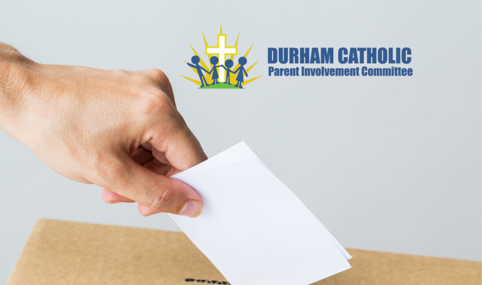 hand putting ballot in box with DCPIC logo