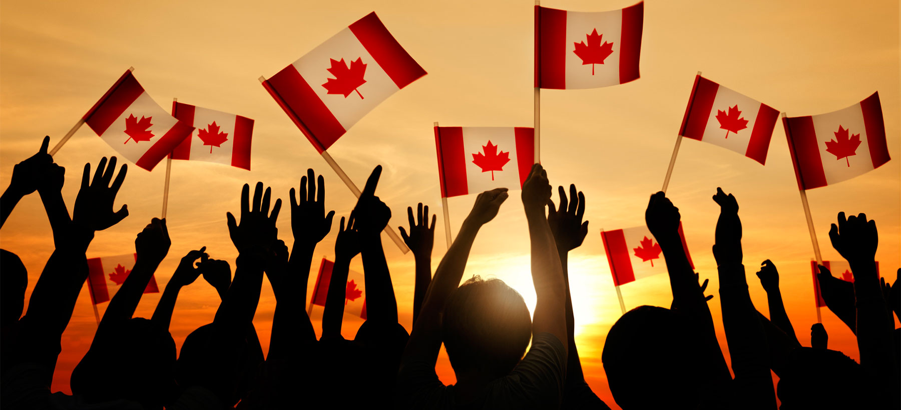 hands holding Canadian flags up in the air