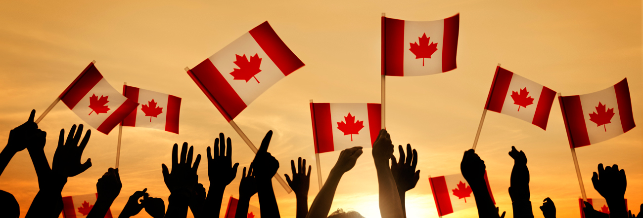 Hands holding Canadian flags in the air